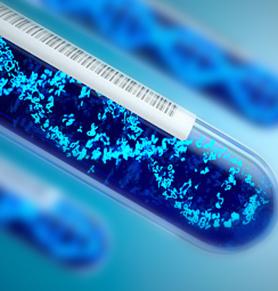遗传学系列